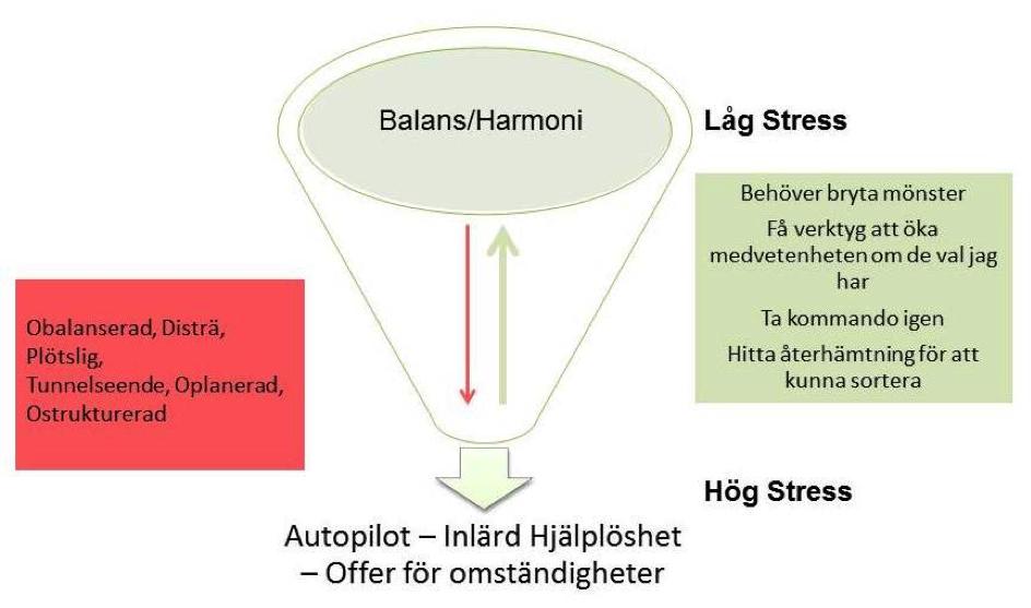 alans/harmoni