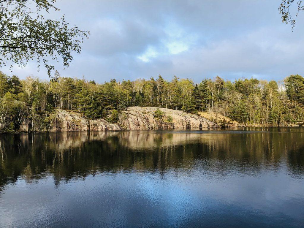 Mindfulness i naturen – Del 2. Med kärlek till livet och allt levande.