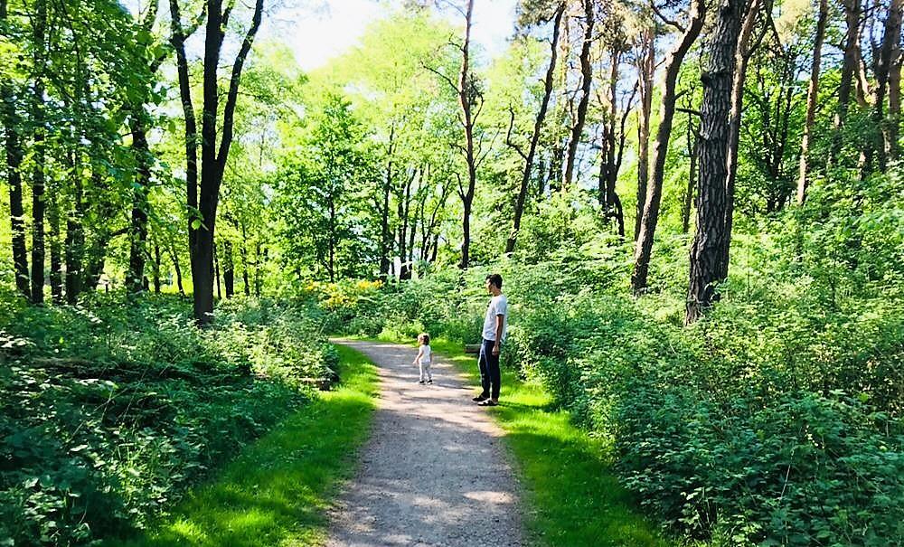 Mindfulness i naturen – Del 3. Frisk av naturen.